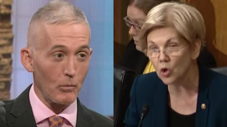 Elizabeth Warren falsely accuses Trey Gowdy of lobbying. Photo credit to The Freedom Times compilation with screen shots.
