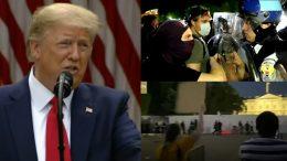 Trump, Protestors