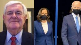 Newt Gingrich, Kamala Harris, Biden