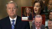 Graham, Amy Coney Barrett, Democrats