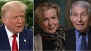Trump, Birx, Fauci