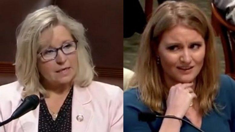 Liz Cheney, Jenna Ellis