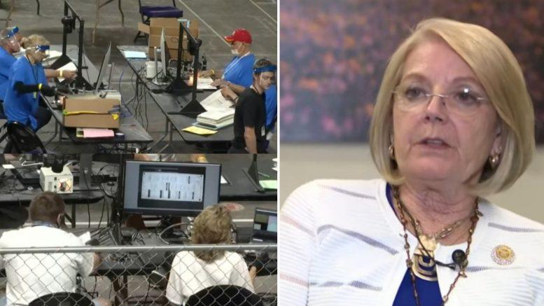 Maricopa County Audit, Karen Fann